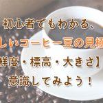 初心者でもわかる、おいしいコーヒー豆の見極め方│鮮度・標高・大きさを意識してみよう!